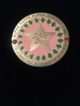AKA SILVER STAR PIN WITH IVIES